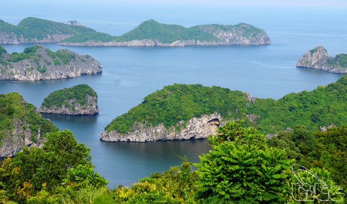 Discovering the beauty of Cat Ba Archipelago