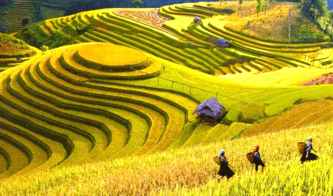 Cultural and tourism festival to kick off in Ha Giang