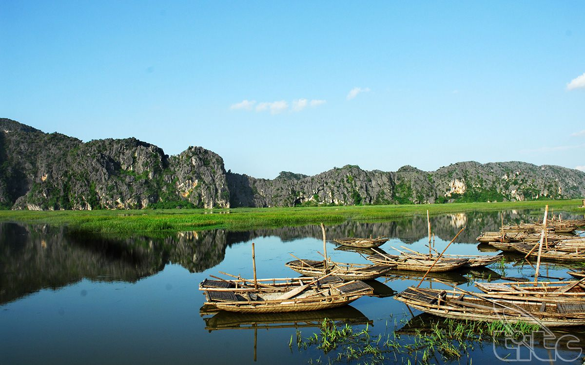 Van Long Lagoon an attractive eco-tourism site